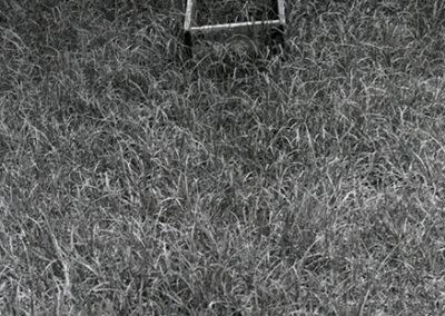 Caja en el pasto, Ciudad de México, 1976.