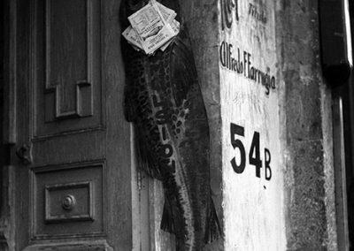 El pez grande se come a los chicos, Ciudad de México, México, 1931